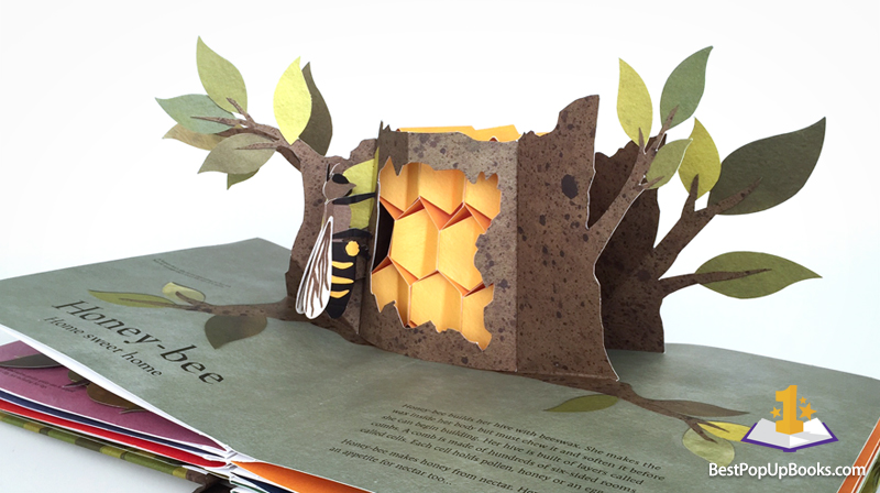 Welcome to the Neighborwood Pop-Up Book - Best Pop-up Books