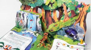 Jungle-Book-Pop-up-book-Matthew-Reinhart-1