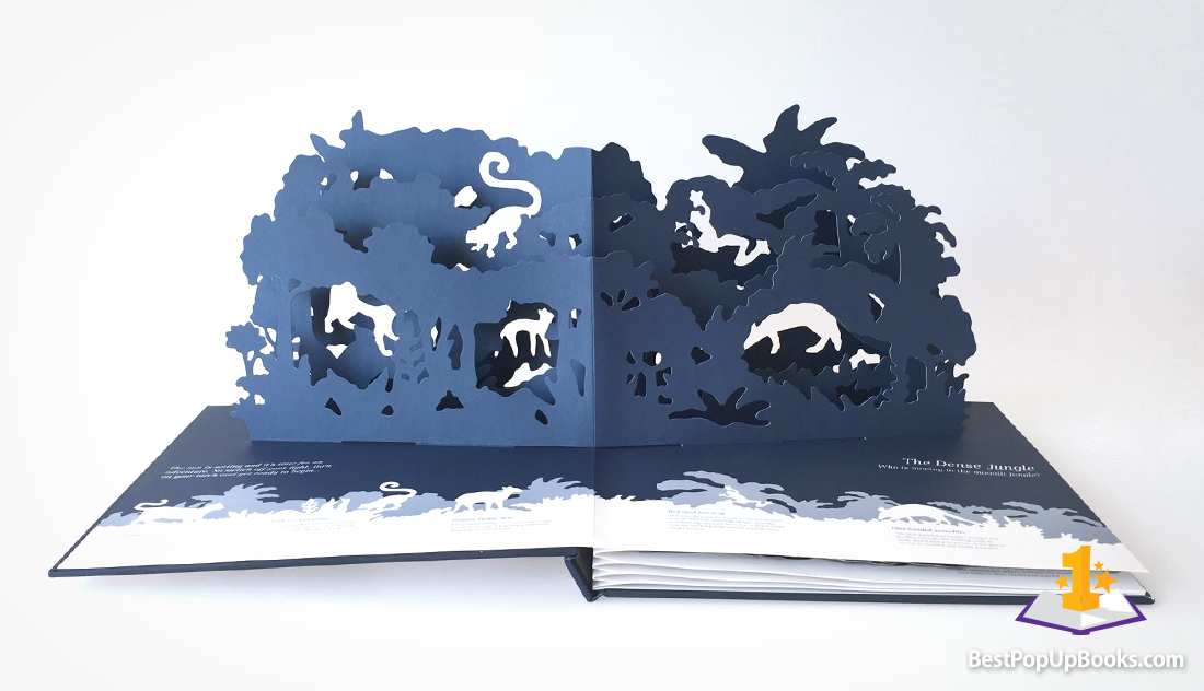 midnight creatures pop-up book