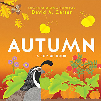Autumn pop-up book David Carter