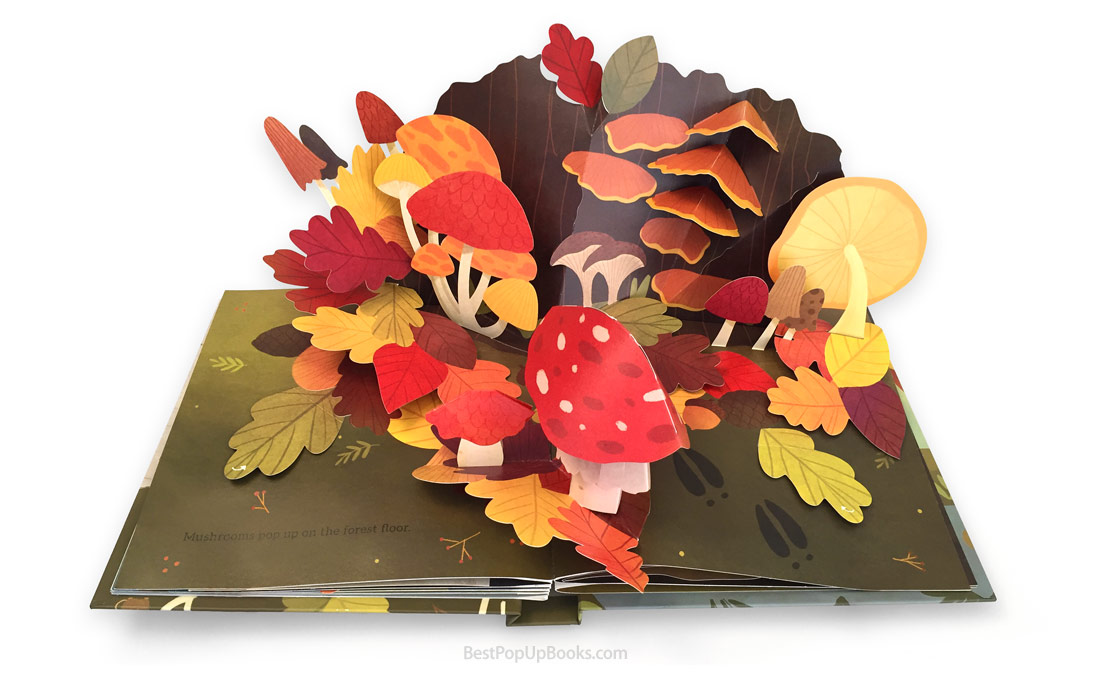 Leaves-pop-up-book-spread