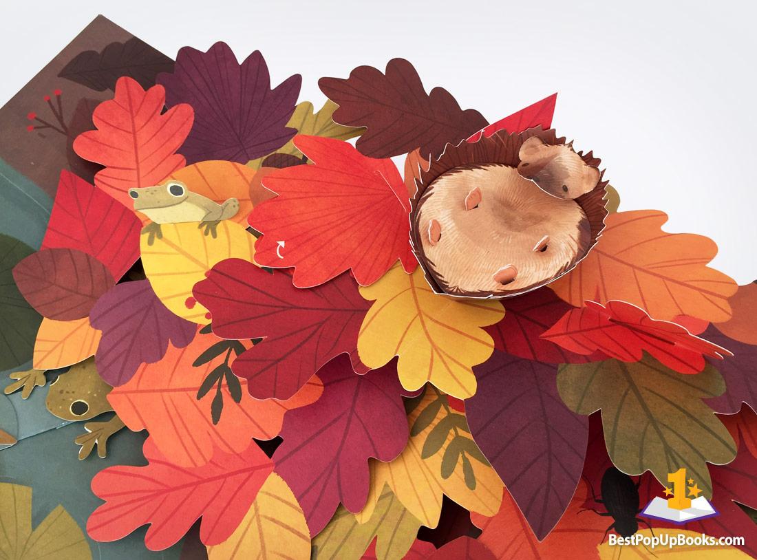Leaves: An Autumn Pop-Up Book - Best Pop-up Books
