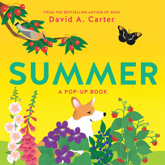 Summer pop-up book David Carter