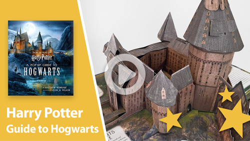 Harry Potter pop-up book